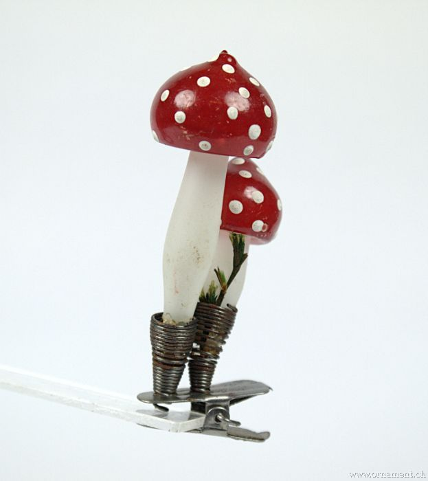 Two Mushrooms on Clip